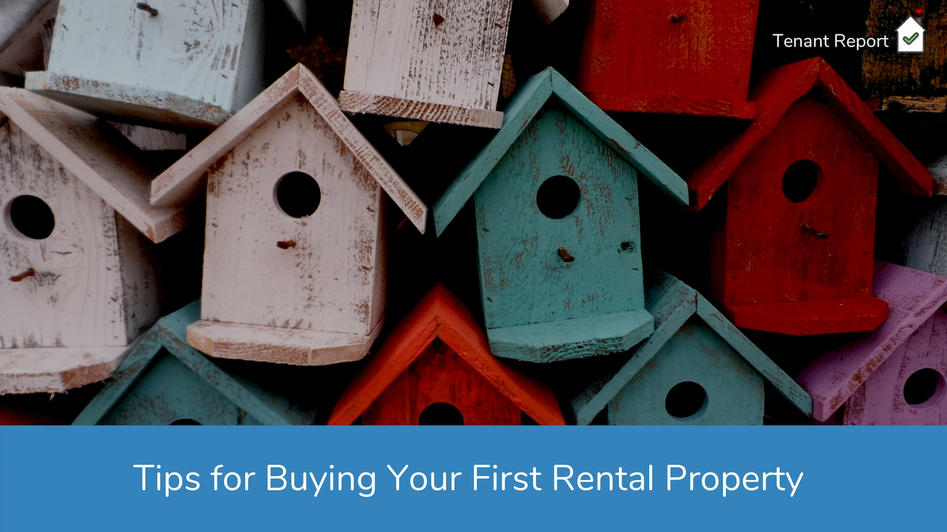 tenant-report-tips-for-buying-your-first-rental-property